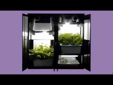 Hydroponics Grow Box Garden - 3 in 1 - 44 Plant