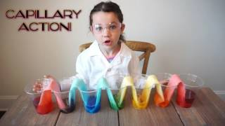 Amazing Science Experiments for Kids | Fun Easy at Home Science Projects | The Science Kid
