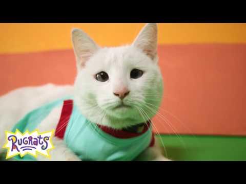 Cat Halloween costumes: Nickelodeon Nicktoons