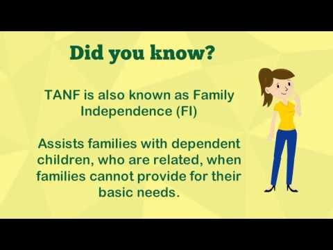 SNAP/TANF Benefits