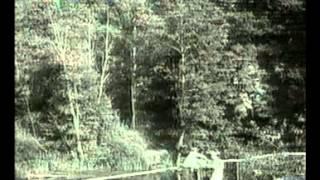 Documentari] La Storia Siamo Noi Orrori Comunismo Stalin