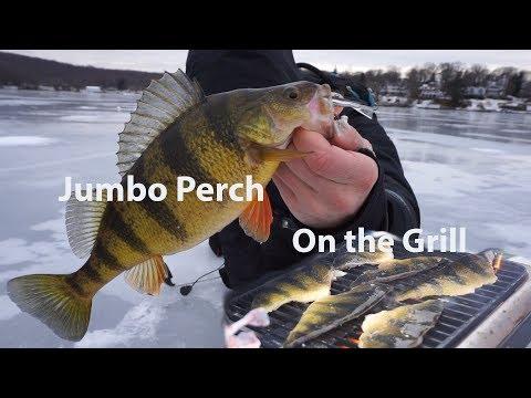 Walleye Ice Fishing & Jumbo Yellow Perch Catch n Cook