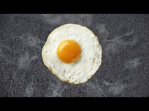 CAN YOU COOK AN EGG IN THE SUN!