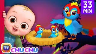Animal Homes Song + More Nursery Rhymes & Kids Songs - ChuChu TV