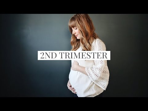 2nd Trimester Update [Vegan Pregnancy]