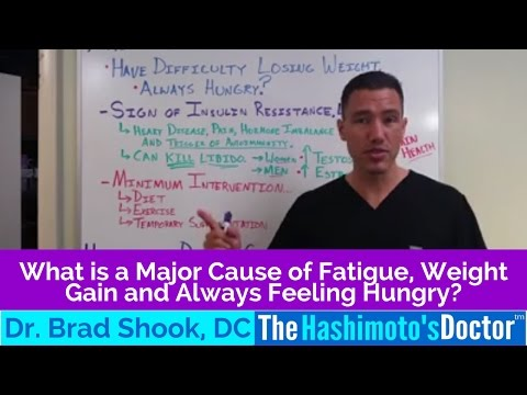 What is a Major Cause of Fatigue, Weight Gain and Always Feeling Hungry?