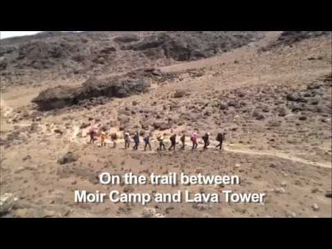 From Moir Camp to Lava Tower - Sep. 26 on Mt. Kilimanjaro