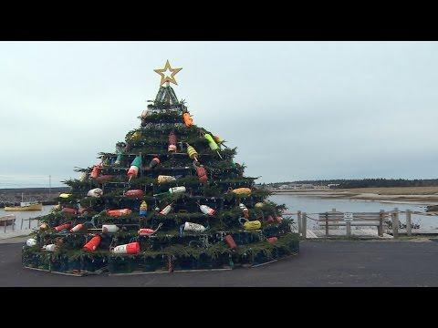 Lobster-trap Christmas tree honours local fishermen in N.S.