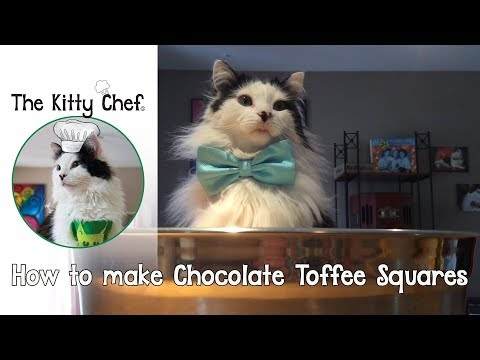 How to make Chocolate Toffee Squares