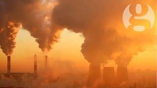 David Attenborough on climate change: