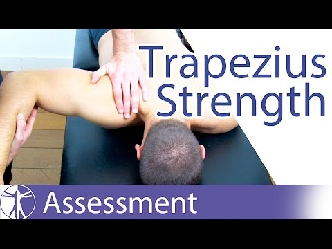 Trapezius Strength Test