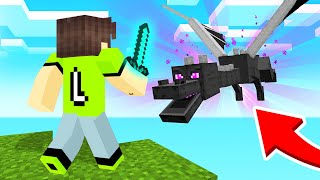 FIGHTING The ENDER DRAGON In MINECRAFT SKY BLOCK!