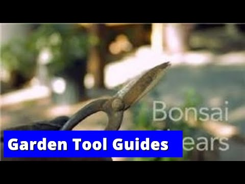 Garden Tool Guides : How to Use Bonsai Shears
