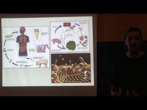Parasites, Cleansing, Diet, Biblical Scriptures & Torah