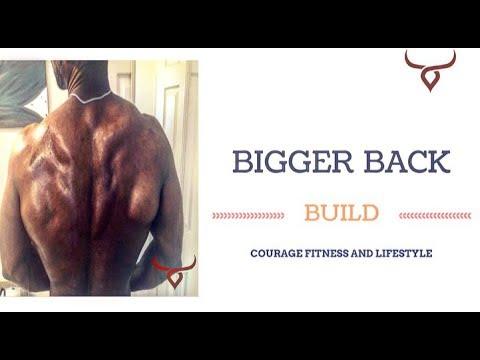 How I built a bigger stronger back wider back....excellent for beginners