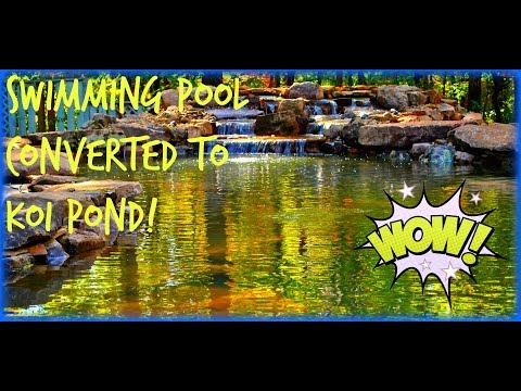 How to Convert a Swimming Pool into a Koi Pond Water Garden Project New Jersey