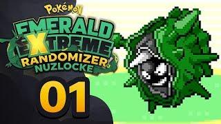 Pokemon Emerald Extreme Randomizer Nuzlocke Download Gba Rom