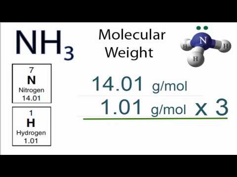 NH3 Molecular Weight: How to find the Molar Mass of NH3 (Ammonia)