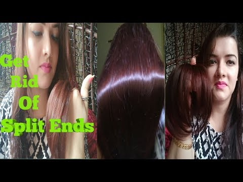 Top 5 home remedies for Split ends. How to get rid of split ends#Easy#Effective#Natural