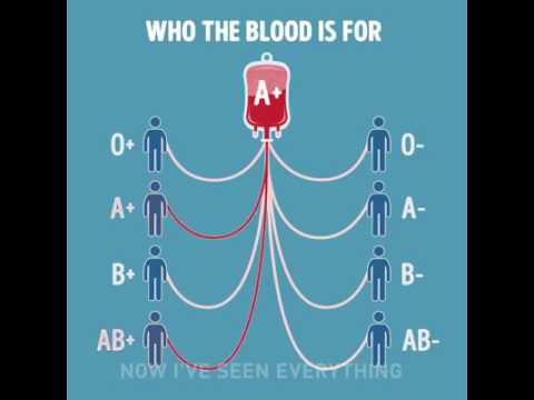 how do I know my blood group?😓
