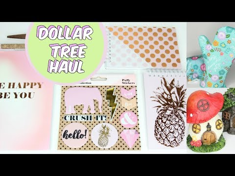 DOLLAR TREE HAUL FEBRUARY 2018