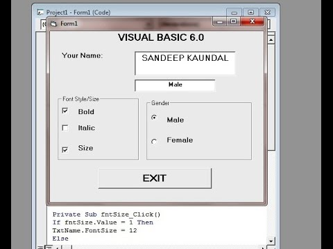 Learn Visual Basic 6.0- Frame Control,Check Box and Option Buttons- Quick and easy