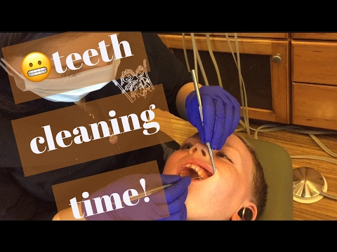 Teeth Cleaning Time!