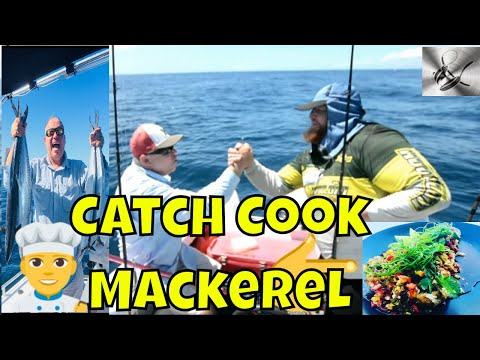 How catch & Cook spotted Mackerel & Cobia (black kingfish ) with !ThehookandThecook & Big Red|