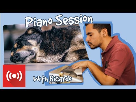 Relax My Dog - Live Piano Music from Ricardo - Music to help with July 4th Fireworks