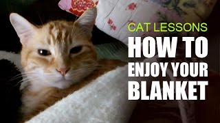 How to Enjoy Your Blanket