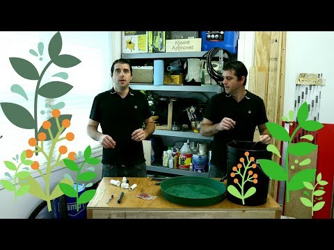 How To Build An Easy Cloner | 3 Easy Ways To Clone Plants | Cheap DIY Aeroponic Cloner