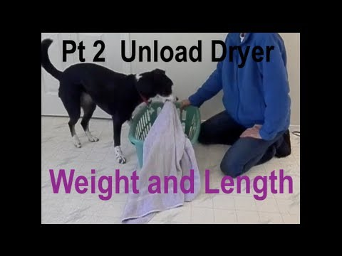 Service Dog Unloading the Dryer Part 2 (Shaping Weight and Length of Items)
