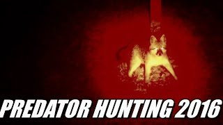 Predator Night Hunting 2016