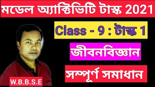 Model Activity Task class 9 Part 1 Life Science wbbse