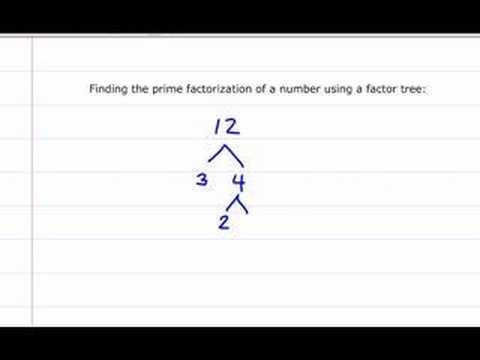 Prime Factorization of 12