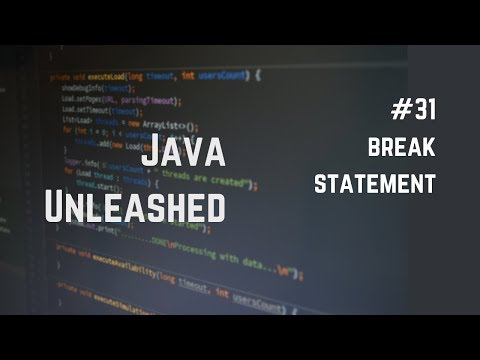 #31 Java Break Explained