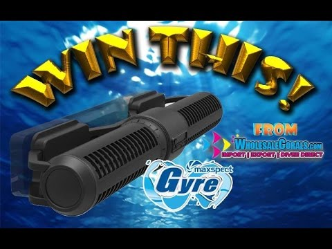 Maxspect FX-150 Gyre Giveaway Sponsored By WholesaleCorals.com!!!