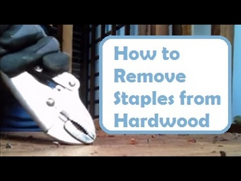 Repairing Old Floors: How to Remove Nails and Staples from Hardwood Floor Without Damaging Wood