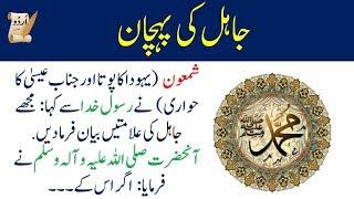 islami waqiat urdu | جاہل کی پہچان