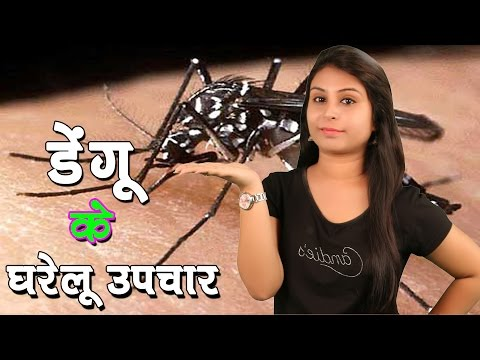 डेंगू के घरेलू उपचार Home Remedies For Dengue Fever | Dengue Symptoms, Treatment & Prevention
