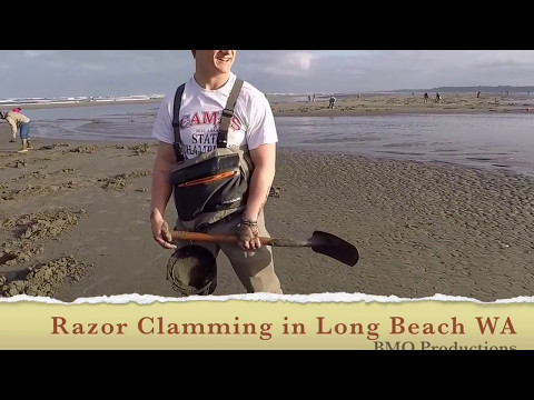 Razor Clam Long Beach WA April 2017 BMO