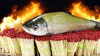 EXPERIMENT 50,000 SAFETY MATCHES vs FISH HERRING