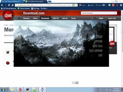 Skyrim -- Terrific Graphics and Performance (Read Description!!)