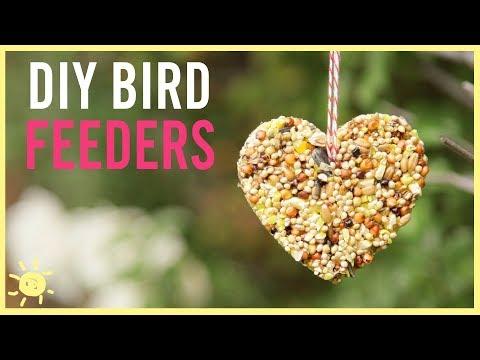 DIY | How to Make a Bird Feeder (Easy Kids Craft!)