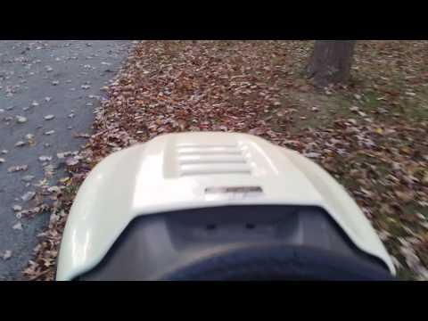 Cheap DIY Leaf Bagger - Very Satisfying