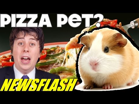 Pizza Hut Promo Offers 'Small Animal' With Order!! - NEWSFLASH