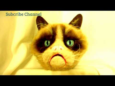 Grumpy Cat Animatronic