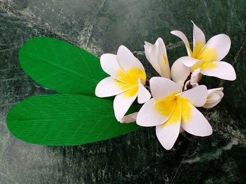How to make Paper Flowers Plumeria \ Frangipani (flower # 131)