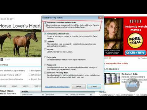 Internet Explorer 8 - Delete Browsing History and Cookies
