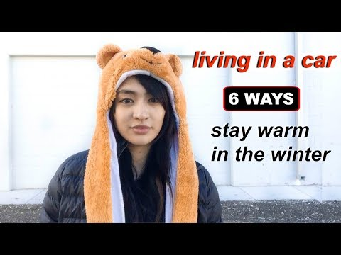 Van Life: 6 Ways to Stay Warm Living in A Van in Winter | Hobo Ahle